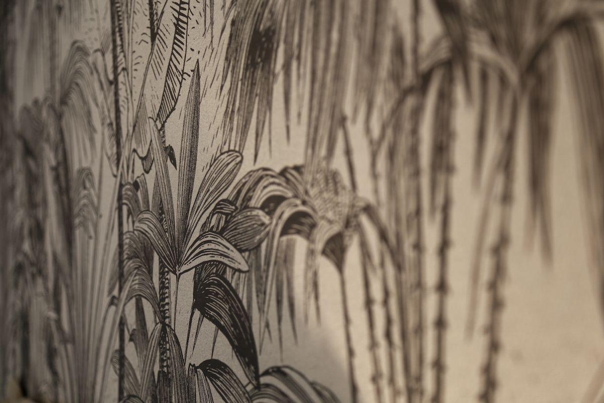 Trilocale Jungle in centro   65 mq